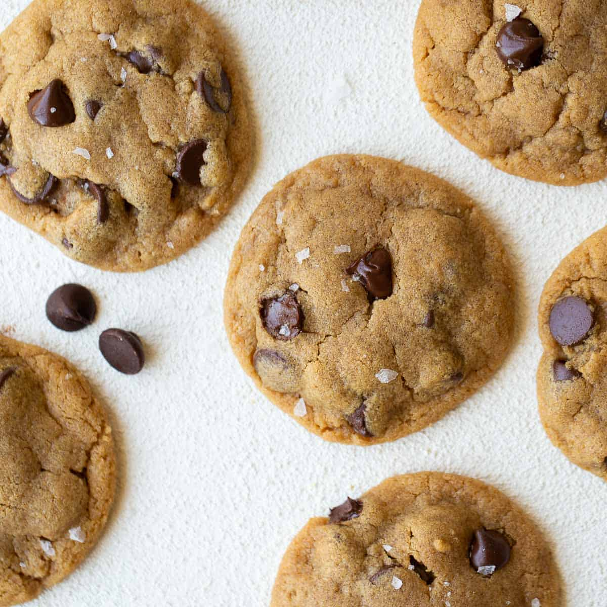 Flourless Peanut Butter Chocolate Chip Cookies Meaningful Eats
