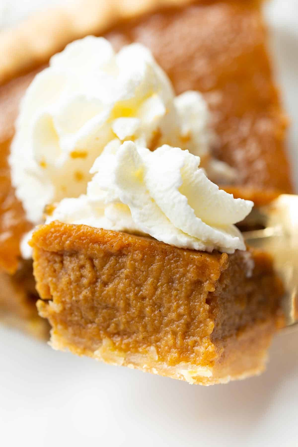 Closeup shot of pumpkin pie with a piece of it on a fork