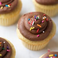 close up shot of cupcake with chocolate frosting and sprinkles