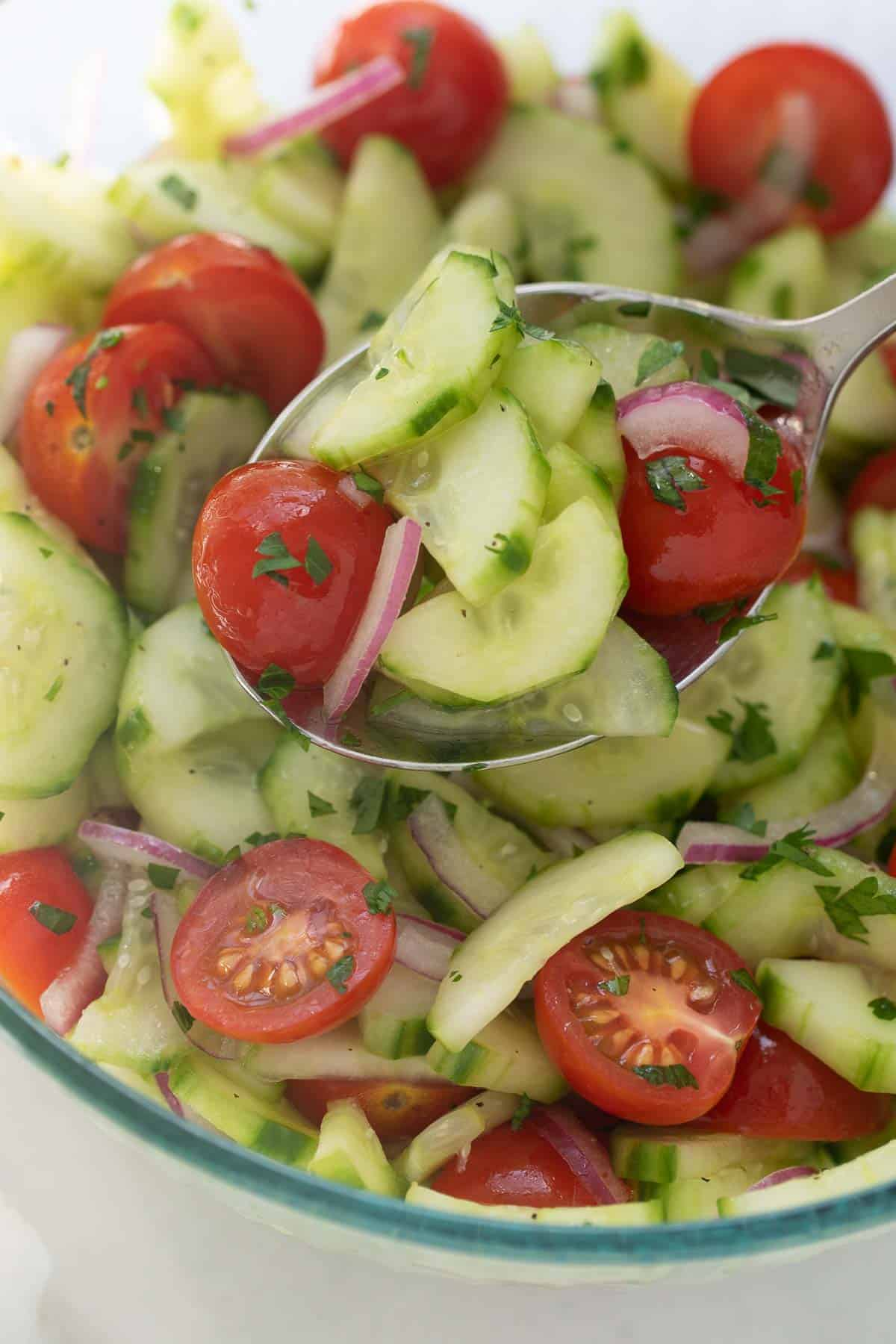marinated vegetables (tomatoes, cucumbers, and red onion) in apple cider vinaigrette