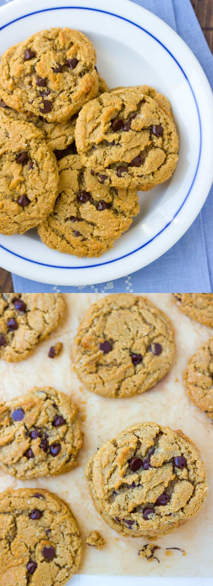 Gluten-Free Chocolate Chip Peanut Butter Oatmeal Cookies! Nobody will guess these delicious cookies are gluten-free.