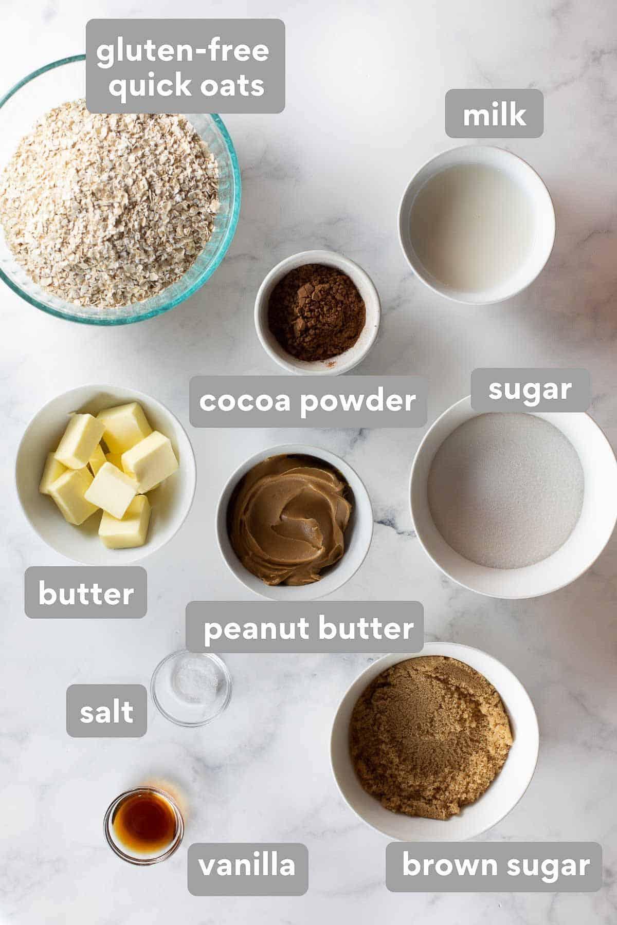 overhead shot of ingredients to make no bake cookies